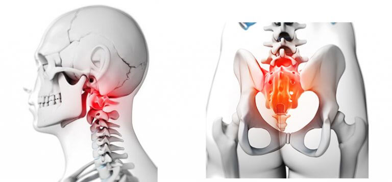 Sacrus is ideal for the sacrum area