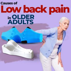 Causes of low back pain in older adults