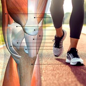 Strengthen your bones